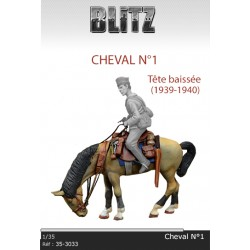 Cheval N°1